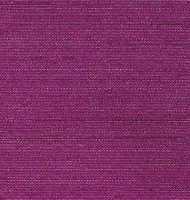Fuchsia (161)